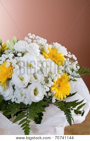 Begonia And Gerbera Flowers