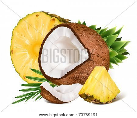 Tropical ripe fresh pineapples and coconuts with leaf. Vector illustration.