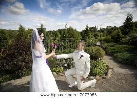 Groom And Bride In Park  Background