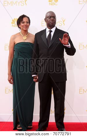 LOS ANGELES - AUG 25:  Andre Braugher at the 2014 Primetime Emmy Awards - Arrivals at Nokia Theater at LA Live on August 25, 2014 in Los Angeles, CA