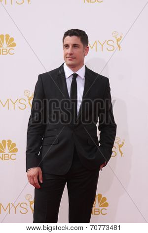 LOS ANGELES - AUG 25:  Jason Biggs at the 2014 Primetime Emmy Awards - Arrivals at Nokia Theater at LA Live on August 25, 2014 in Los Angeles, CA