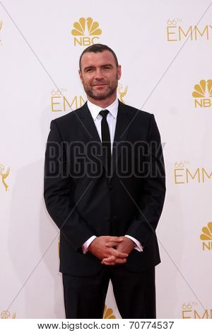 LOS ANGELES - AUG 25:  Liev Schreiber at the 2014 Primetime Emmy Awards - Arrivals at Nokia Theater at LA Live on August 25, 2014 in Los Angeles, CA