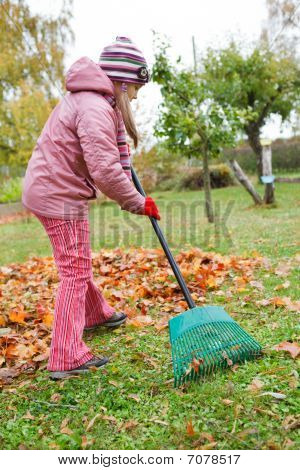 Little Girl Rake Autumn Leaves In Garden