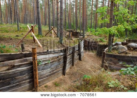 Defensive Trench In Forest