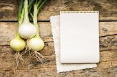 stock photo of recipe card  - Menu background - JPG