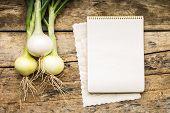 foto of recipe card  - Menu background - JPG