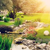 stock photo of sun flare  - Spring flowers against sun in the Asian garden with a pond with lens flare - JPG