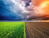 stock photo of cultivation  - Cultivated green meadow and heavy sky clouds - JPG