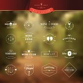 image of food logo  - Set of vintage style elements for labels and badges for wine - JPG