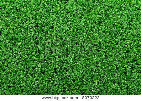 artificial  grass turf background