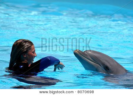 Playing With The Dolphin