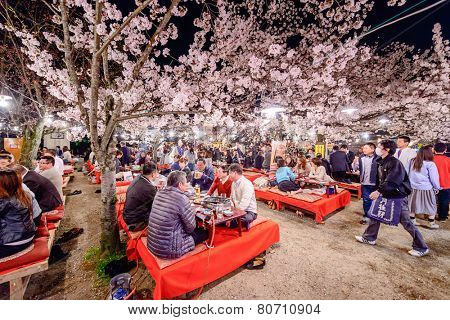 KYOTO, JAPAN - APRIL 3, 2014: People enjoy spring season by partaking in nighttime Hanami festivals in Maruyama Park. The annual festivals coincide with the seasonal blooming of the cherry blossoms.