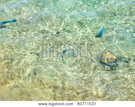 Clear Transparent Water  Of The Coastal Beach