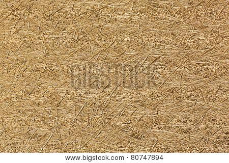 Textured Golden Paper