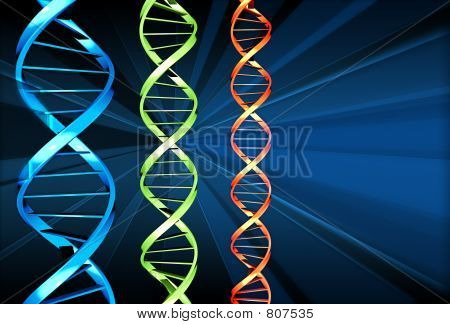 3 dna strands
