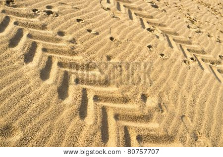 Tyre Tracks And Footprints