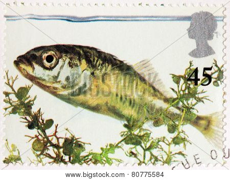 Stickleback Stamp