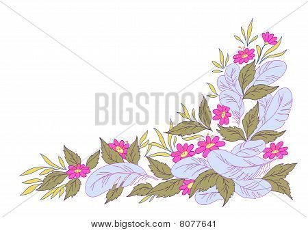 Flowers, Leavesand Feathers