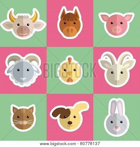 head of farm animals