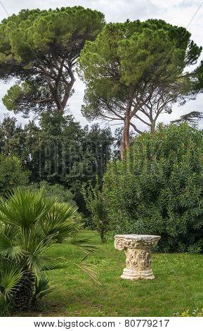 Garden Of Villa Celimontana, Rome
