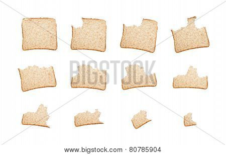 Eating A Slice Of Wholemeal Bread