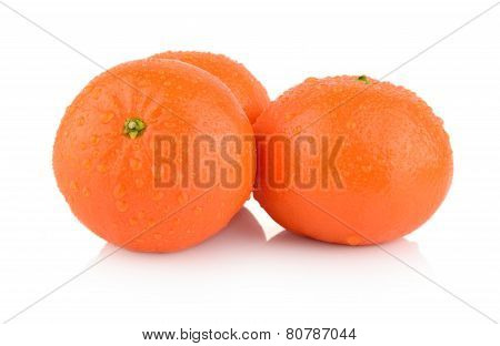 Studio Shot Dewy Few Mandarines Isolated On White