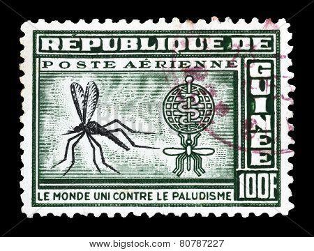 Guinea 1962 Mosquito