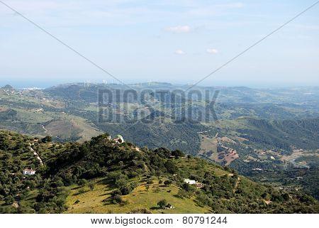 Spanish countryside, Gaucin.