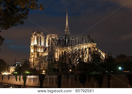 Notre Dame Autumn Night Illuminated
