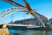 picture of dom  - Dom Luis I Bridge over Douro river in Porto Portugal - JPG