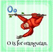 stock photo of orangutan  - Illustration of a letter o is for orangutan - JPG