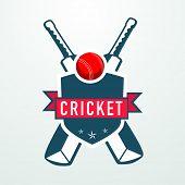 stock photo of cricket bat  - Cricket sports concept with bats - JPG