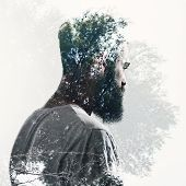 picture of beard  - Double exposure portrait of a brutal bearded man and forest - JPG