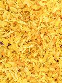 foto of marigold  - Full frame background of petals Marigold flower - JPG