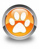 picture of animal footprint  - Animal footprint icon glossy orange round button - JPG