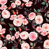 picture of rose flower  - Hand drawn watercolor floral  seamless pattern with tender pink roses and brier flowers and berries - JPG