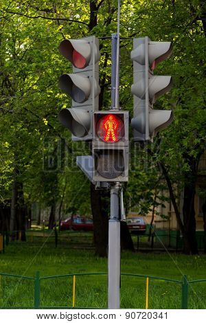 Pedestrian Traffic Lights On Trees Background