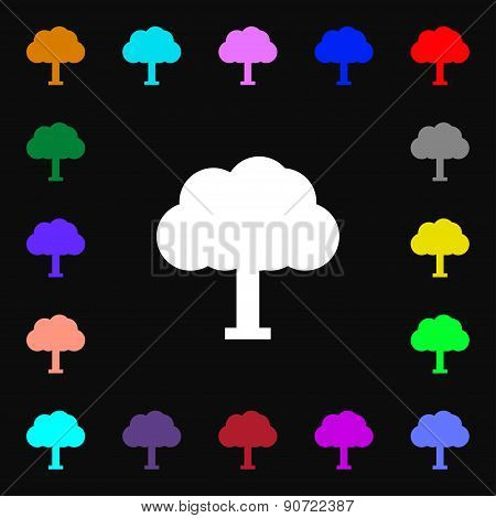 Tree, Forest  Icon Sign. Lots Of Colorful Symbols For Your Design. Vector