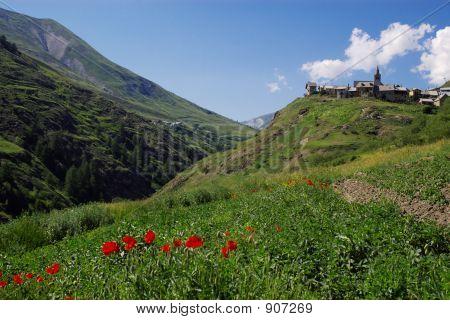 Alpes Summer Landscape