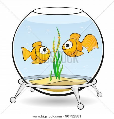Couple Goldfish In An Aquarium