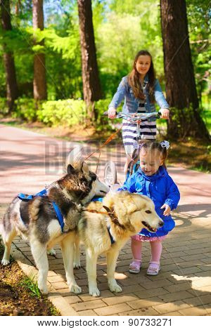 little girl in blue jacket stroking sled dogs, her sister rides scooter in summer park, focus on kid