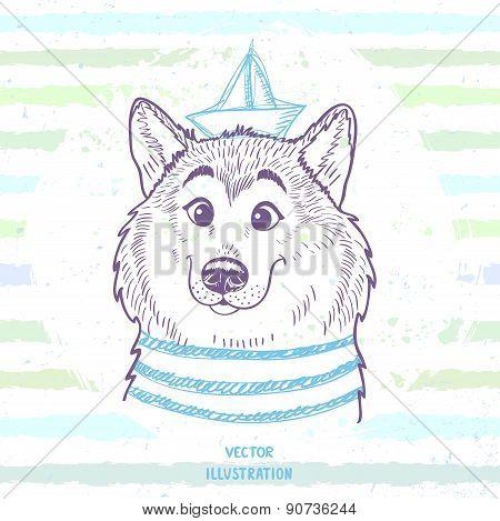 Dog marine style