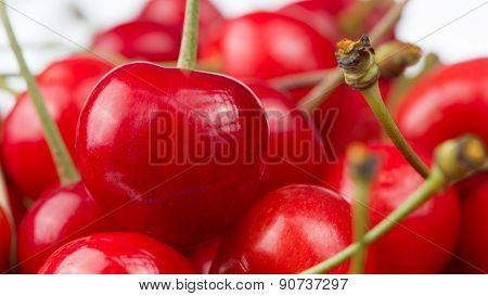 Red Cherries Close-Up