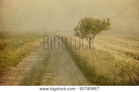 Grunge Image Of A Tree Over Grunge Background