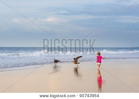 Adorable Curly Baby Girl Running On A Beautiful Beach Playing With seagulls