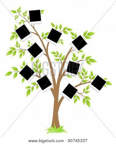 Famity tree