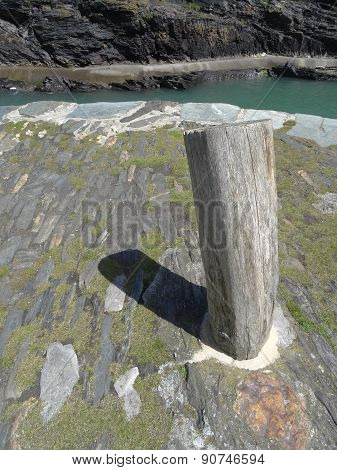 Harbour Pathway With Moring Log