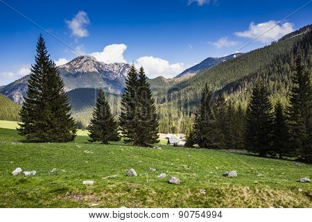 Chocholowska Valley, Tatra Mountains, Poland