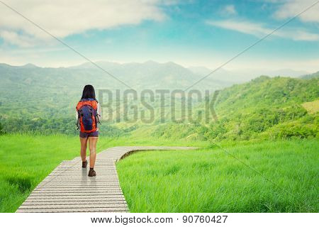Hiker Walking On Wood Path