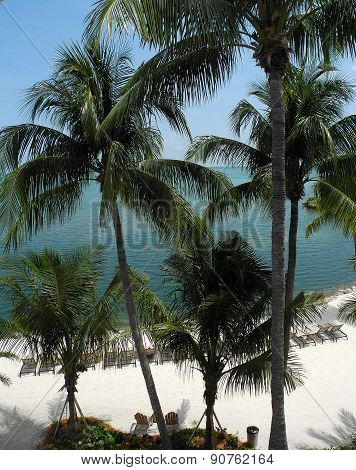 A Tropical Florida Keys Beach